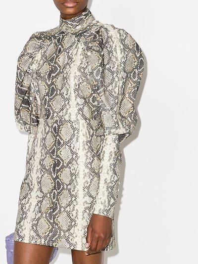 Kim Snake Print Mini Dress